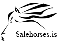 Salehorses.is